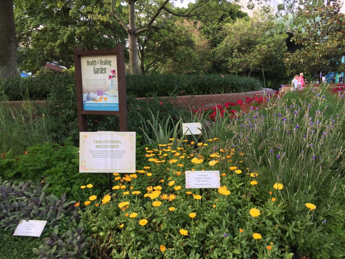 2017 Epcot Flower And Garden Festival Busy Disney